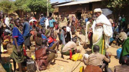 Etiyopya'da bir köye saldırı düzenlendi: 100'den fazla insan öldü