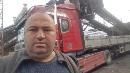 Tomruk yığını üzerine devrilen işçi hayatını kaybetti