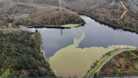 Elmalı barajındaki su seviyesinde düşüş: Baraj suyu yeşile büründü