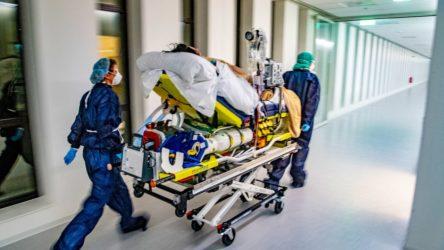 Hollanda'da koronavirüs vakalarında artışın hızlanması üzerine ordu göreve çağrıldı