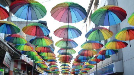Bakanlıktan karar: LGBTİ+ ve gökkuşağı temalı ürünlere +18 ibaresi