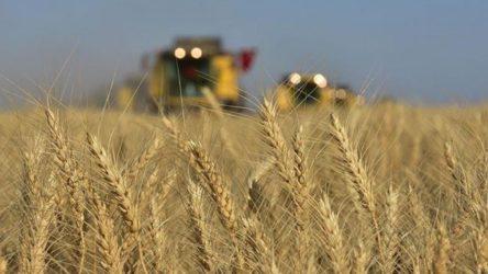 Türkiye, Rusya'dan en çok tahıl ithal eden ülke oldu