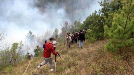 Kastamonu'da orman yangınları