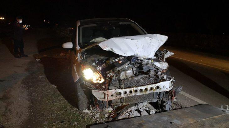 Sürüye çarpan alkollü sürücü 21 koyunu katletti
