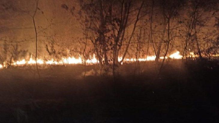 Adil Öksüz soruşturmasındaki kritik kazı alanında yangın!