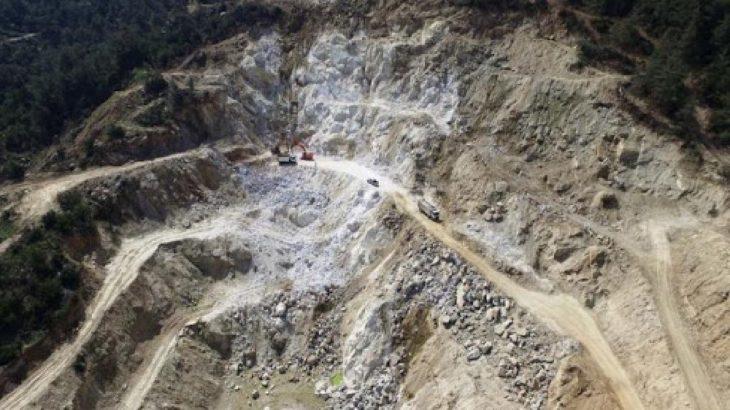 Kırklareli'de 120 hektarlık alandaki on binlerce ağaç kesilecek