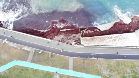 Caddebostan sahili kırmızı yosunla kaplandı