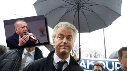 Erdoğan'a 'terörist' diyen aşırı sağcı politikacı Wilders'a soruşturma