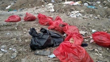 Ankara Barosu, Gölbaşı'ndaki köpek katliamına ilişkin suç duyurusunda bulundu