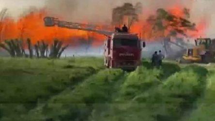 Afyonkarahisar'da Enerji Santrali'nde yangın!