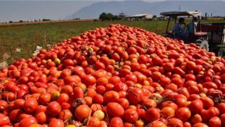 Nisan ayının zam şampiyonu domates