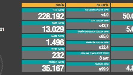Sağlık Bakanlığı son 24 saatte 13 bin 29 vaka açıkladı