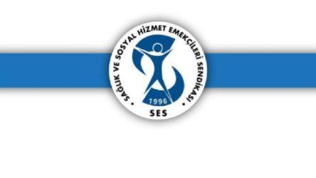 SES Eş Başkanı, üye ve yöneticileri gözaltına alındı