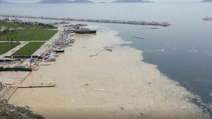 Marmara Denizi'nde müsilaj incelemesi yapıldı: Bu seneki manzarayı arayacağız