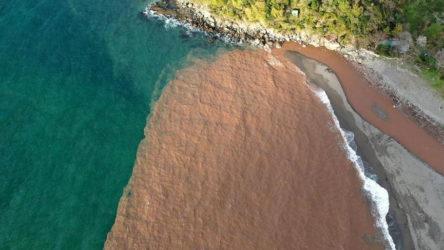 Zonguldak'ta sağanak yağışın ardından denizin rengi değişti