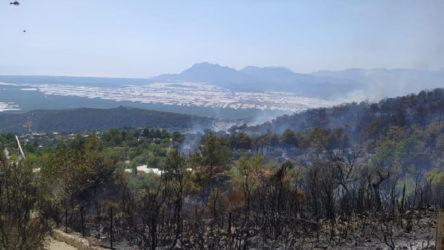 Kaş'taki yangında 55 dönüm ormanlık alan kül oldu