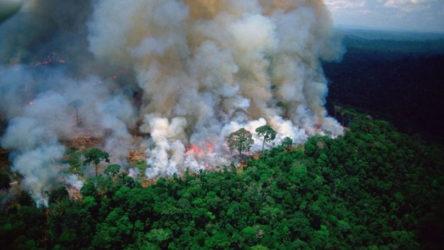 Amazonlar'da son 14 yılın en şiddetli yangınları