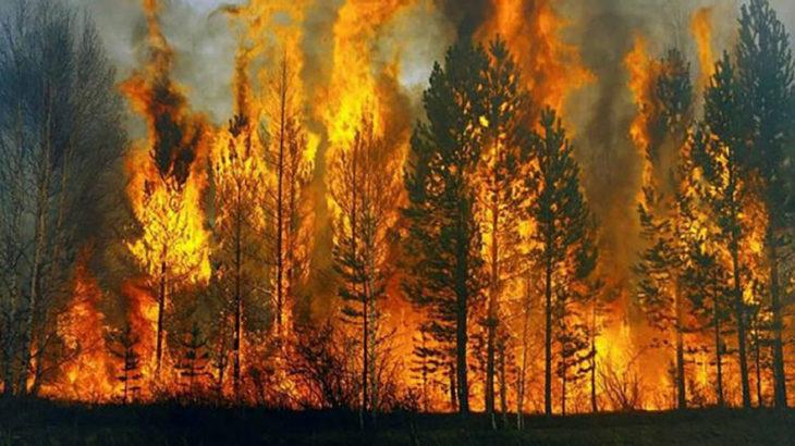 Türkiye genelinde 31 yangının 10'u kontrol altına alındı