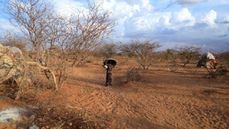 İklim krizi Madagaskar'ı vurdu!