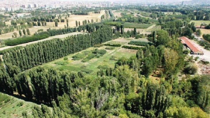 Atatürk Orman Çiftliği'ne yeni kıyım girişimi