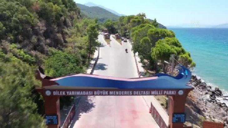 Milli Park işletmesinin fiyatları tepki çekti: 2 şezlong 1 şemsiye 200 TL