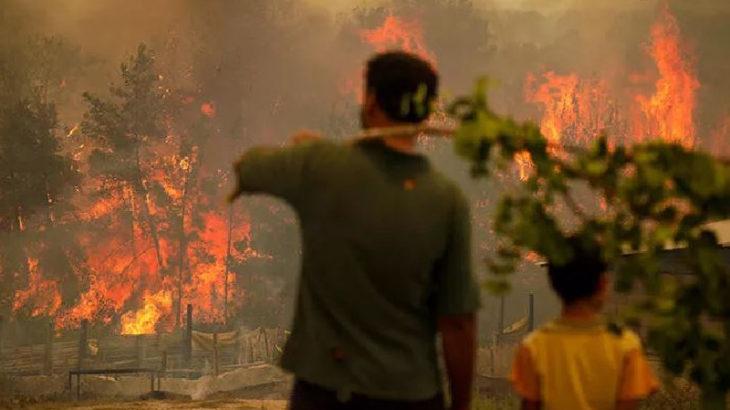 Sayıştay: Ülke genelinde çıkan orman yangınlarında Orman Genel Müdürlüğü'nün ihmalleri söz konusu