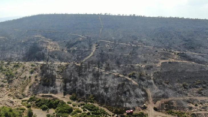Türkiye'nin ciğerleri yanıyor: Foça'daki yangında 30 hektar ormanlık alan zarar gördü