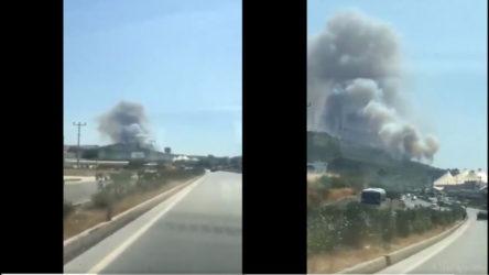 Bodrum'un Güvercinlik bölgesinde ormanlık alanda yangın çıktı