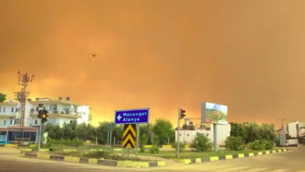 Manavgat'ta orman yangınlarının bilançosu: 7 insan ve 33 bin hayvan öldü, 60 bin hektar orman yandı