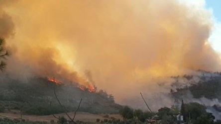 Osmaniye ve Mersin Aydıncık'ta çıkan orman yangınları kontrol altına alındı