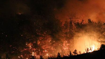 Kocaeli'deki orman yangınına çevre temizliği yapan yurttaş sebebiyet vermiş