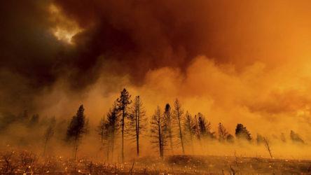 Milas ve Köyceğiz dışında bütün yangınlar kontrol altında