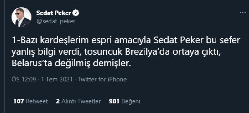 Sedat Peker'den 'Tosuncuk' açıklaması