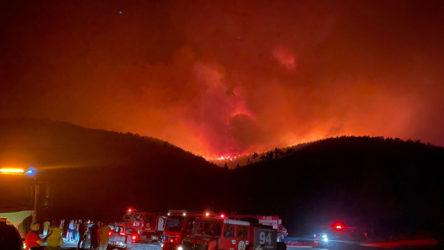 Yangınlardan dolayı 864 kişi hastanelik oldu, 8 kişi yaşamını yitirdi