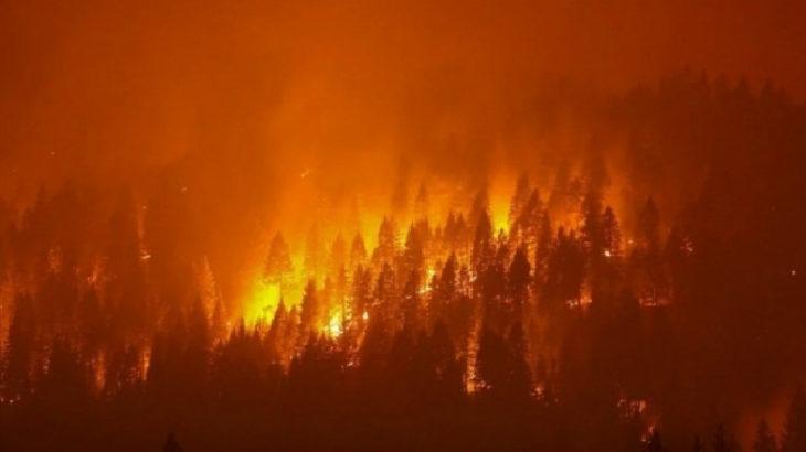 TKH'nin orman yangınları ile ilgili suç duyurusuna savcılıktan cevap: Soruşturma açılmasına gerek yok