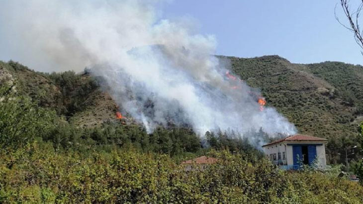 Karabük'te orman yangını çıktı
