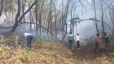 AKP'li Başkan, Dersim'deki yangınlara 'yaygara' dedi!