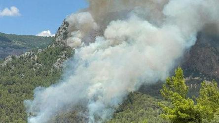Antalya'nın Alanya ilçesindeki orman yangınları kontrol altına alındı
