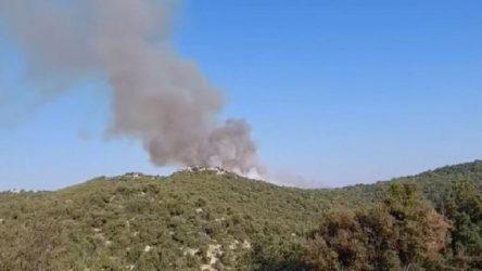 Antalya'nın Demre ilçesinde orman yangını!