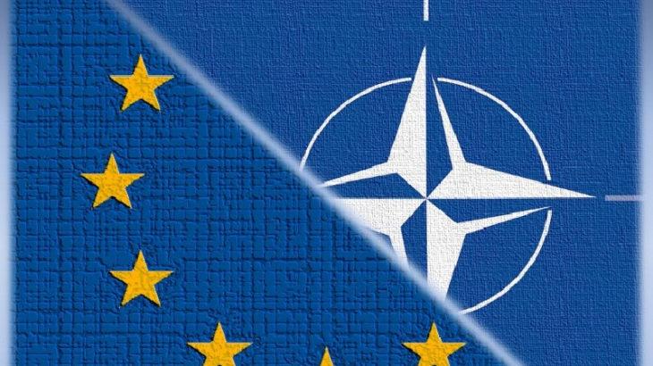 Almanya'dan NATO'ya sert eleştiriler: İnsan haklarının gözetilmesi işimiz mi?