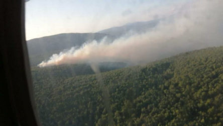 Çeşme'de orman yangını: Müdahale havadan ve karadan yürütülüyor