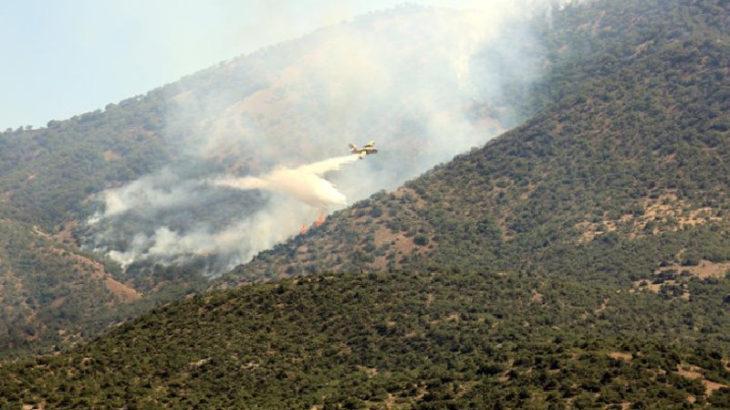 Dersim'de Buzlutepe köyü mevkisinde orman yangını çıktı