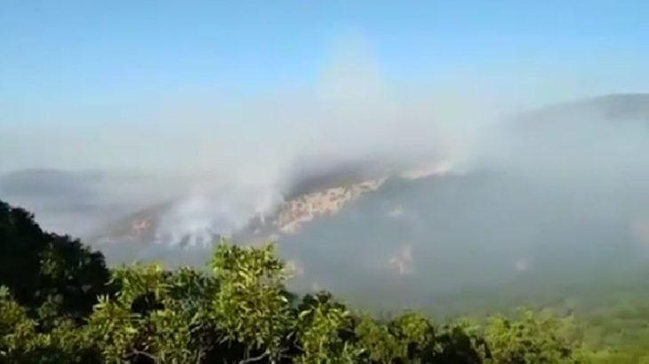 Dersim'de belediye başkanlarının yangın bölgesine gidişine izin verilmedi