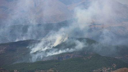 Dersim'de orman yangınları: AKP seyrediyor