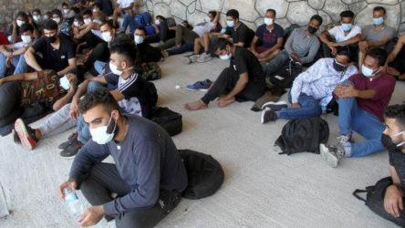 Muğla'da 55 düzensiz göçmen yakalandı