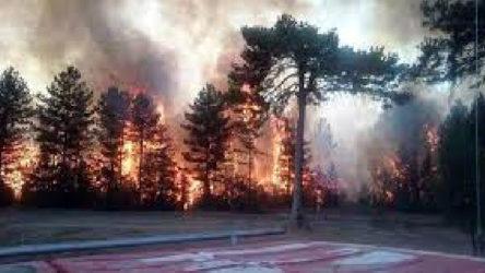 Bolu'da yangına karşı 'şerit' önlemi