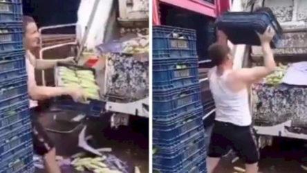 İstanbul sebze halindeki görüntülerin ardından inceleme başlatıldı