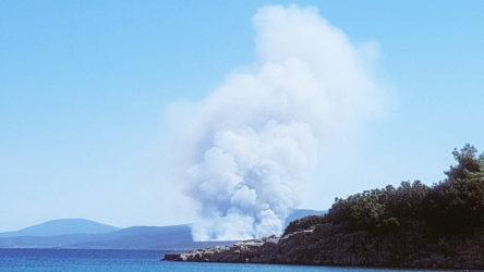 Karaburun'da orman yangını başladı