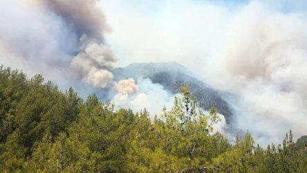 Köyceğiz'de yangın ilerliyor: 2 mahalle boşaltılıyor