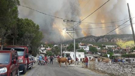 Milas'ta yangın yerleşim bölgesine ulaştı, Gökbel Köyü boşaltıldı